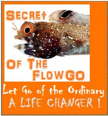 flowgofish